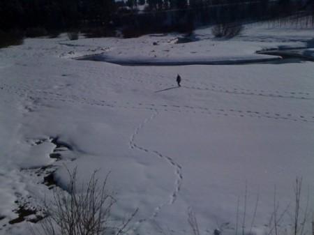 Wirtzfeld winter wandeling 16 februari 2010: de Holzwarche beek