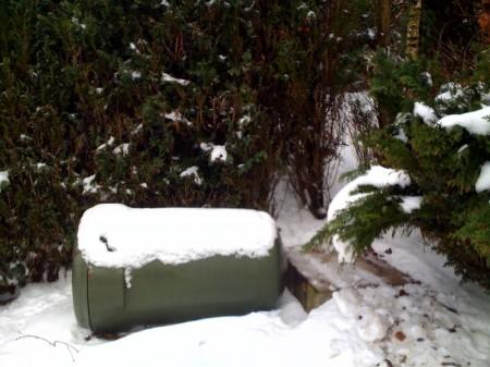 sneeuwton2